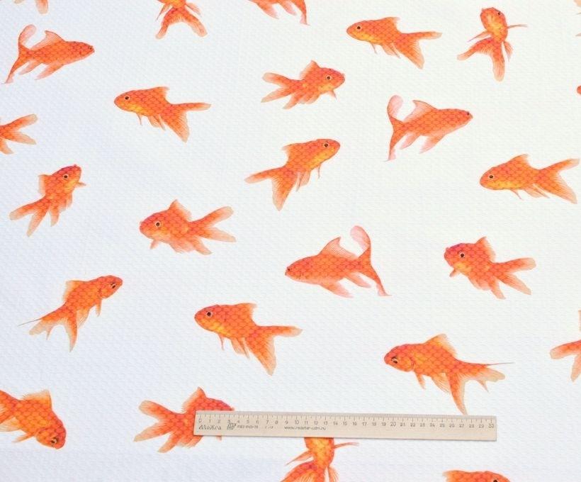 Жаккард хлопковый D&G арт. 230703502, фото 1